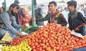 Flour prices drop, Iranian tomatoes reach Taftan