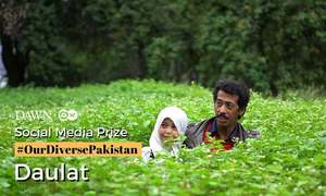 Social Media Prize: 'Daulat' by Mashal Khan Balti and team