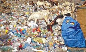 Monitoring of borders ordered to curb transport of plastic bags into Sindh