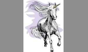 Unicorns in the making