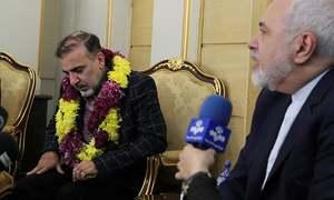 Iranian, American freed in 'prisoner swap'