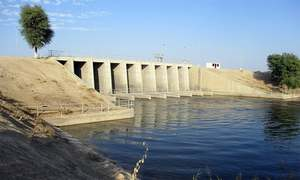 Sindh's man-made Chotiari reservoir turns into environmental disaster