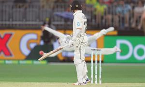 Starc rocks New Zealand to put Aussies in driving seat