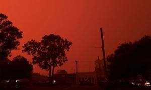 آسٹریلیا کے جنگل میں خوفناک آتشزدگی