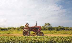 US farmers see another bleak year despite China trade deal