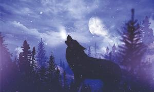 Story Time: The hungry wolf