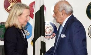 غیر قانونی مقیم پاکستانیوں کے مسئلے پر حکومت کے تعاون کو سراہتے ہیں، ایلس ویلز