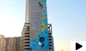 کراچی میں 'رائزنگ بلیو' کے نام سے دنیا کا بلند ترین میورل تیار