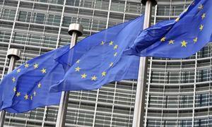 یورپی پارلیمنٹ کا مقبوضہ کشمیر کے الحاق، شہریت قانون کے خلاف قرارداد پر ووٹنگ کا فیصلہ