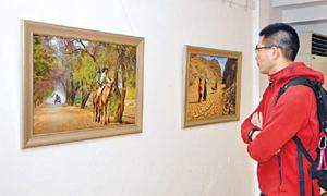 Photography exhibition at Alhamra