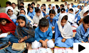 پنجاب کے سرکاری اساتذہ کی سہولت کے لیے آن لائن ایپلیکیشن متعارف
