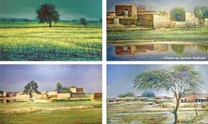 Solo exhibition depicts Punjab's rural landscape