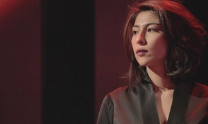Lahore court stays proceedings in Meesha Shafi's defamation case against Ali Zafar