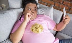 بچوں کو موٹاپے کا شکار بنانے والی عام غذا