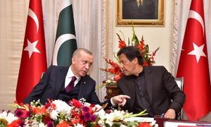 'پاکستان کی ترکی سے سرحد نہیں، دل اور دماغ ملتے ہیں'