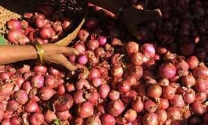 ECC bans onion export, sets wheat procurement target at 8.25m tonnes