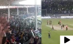 کوئٹہ گلیڈی ایٹرز کے ہاتھوں کراچی کنگز کو  شکست، شائقین کا جشن