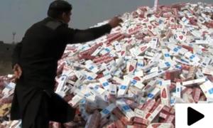 ایف بی آر نے کروڑوں روپے مالیت کی غیر قانونی سگریٹ جلادیں