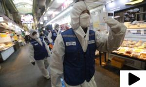 کورونا وائرس کو عالمی وبا قرار دیے جانے کا امکان