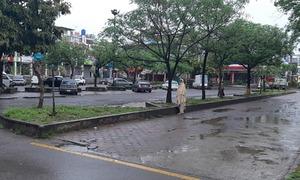 کورونا وائرس اور اسلام آباد میں بڑھتا خوف