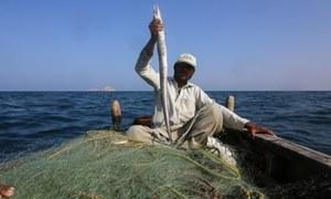 Virus forces fishing ban near Gwadar