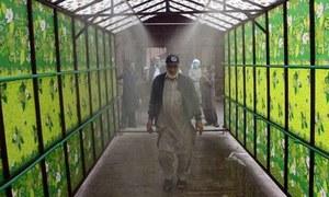 Health experts caution people against 'antiviral' walk-through gates