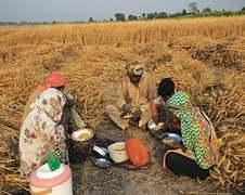 Rural poor hit by virus-induced financial crunch