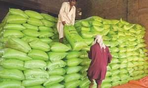 Fertiliser sales halt amid subsidy uncertainty