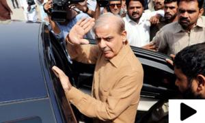 لاہور ہائیکورٹ نے شہباز شریف کی عبوری درخواست ضمانت منظور کر لی