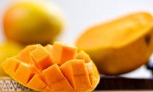 کیا ذیابیطس کے مریض پھلوں کے بادشاہ آم سے لطف اندوز ہوسکتے ہیں؟