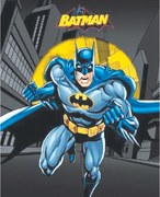Book review: Batman and Robin Save the Day!