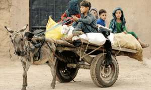 Forced displacement affecting over 1pc of humanity: UNHCR