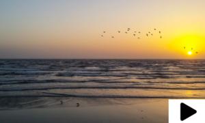 کورونا وائرس کے باعث کراچی کے ساحل کی رونقیں ماند پڑ گئیں