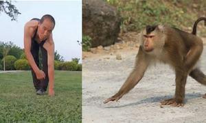30سال سے بندروں کی طرح چلنے والا چینی شخص