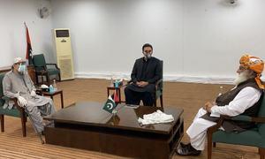 فضل الرحمٰن کی آصف زرداری اور بلاول سے ملاقات، سیاسی امور میں ساتھ چلنے پر اتفاق