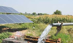 Solar revolution in agriculture: plan beyond present