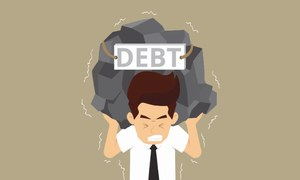 Growing domestic debt