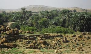 کائی: سندھو گھاٹی کی قدیم اور قیمتی وادی