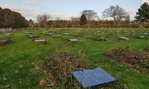 ایک برطانوی قبرستان کی 'سیر'