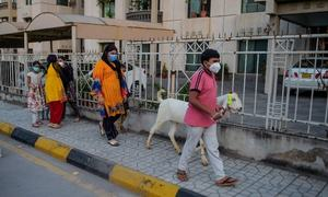 Govt notifies 3-day holiday for Eidul Azha