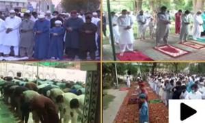 ملک بھر میں عید الاضحیٰ مذہبی جوش وجذبے سے منائی جارہی ہے