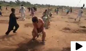 ضلع خیبر کی تحصیل باڑہ میں شجر کاری مہم بدنظمی کا شکار