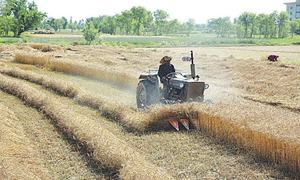 New strategy eyes 5pc agri growth