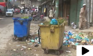 کراچی میں حالیہ بارشوں کے بعد مکھیوں اور مچھروں کی بھرمار
