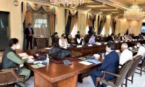 ارکان پارلیمان کو سرکاری محکموں کے بورڈز کا رکن بننے کی اجازت
