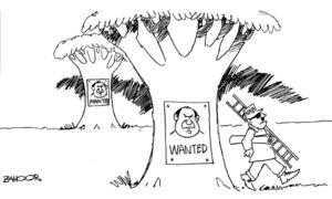 Cartoon: 11 September, 2020