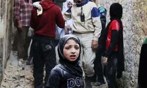 Dutch launch case against Syria over 'horrific' torture