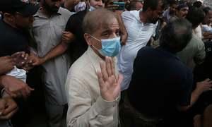 منی لانڈرنگ کیس: ضمانت مسترد، شہباز شریف احاطہ عدالت سے گرفتار