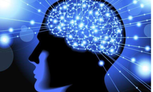 دماغ کو ہمیشہ تیز رکھنے میں مددگار آسان عادات
