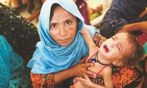 40pc children under five years stunted in Pakistan: report